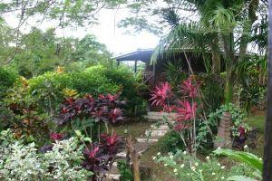 hibiscus_bungalow2