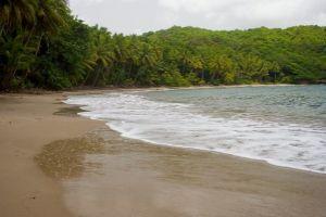 Vacances Dominique